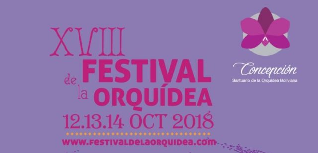 Banner-Web-Festival-.jpeg